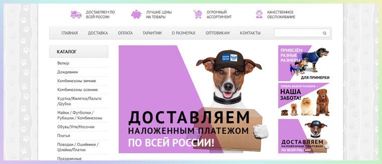 дизайн магазина собаки